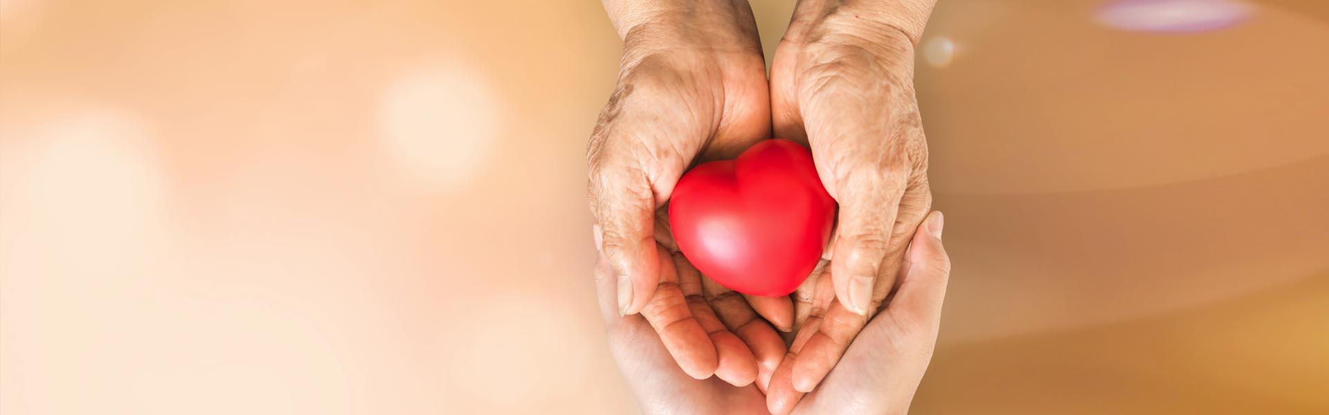 Schreiber-Diesntleistungen-Seniorenbetreuung-Header-3